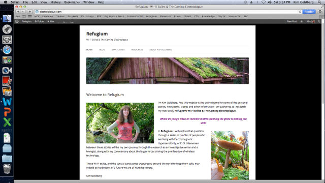 Here is the homepage for my new Refugium website. It's really a free WordPress.com blog. But I designated a static front page as my homepage instead of going with WordPress's default homepage, which is always the blog.