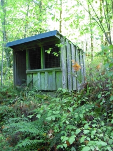 Owl blind in wooded nature sanctuary at Thistledown Farm, Nanaimo, BC